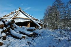 Die Biberburg im Schnee - Dezember 2008