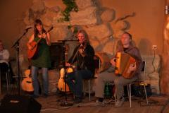 Irish Night, Konzert von Toe for Toe - 7. November 2015