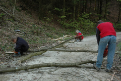 Waldarbeit - 26. April 2008